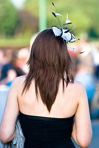 Fascinator in wedding guests hair