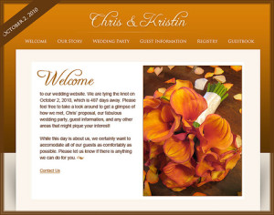 Wedding Website or wedsite